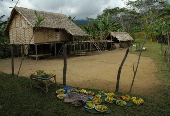 Villages-11